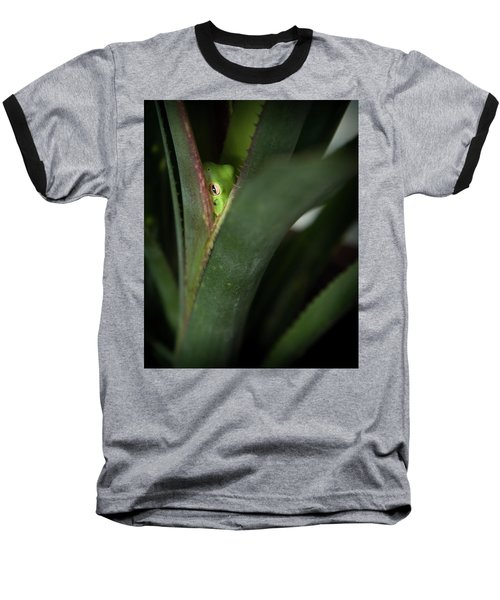 Perching With Comfort Baseball T-Shirt by Denis Lemay