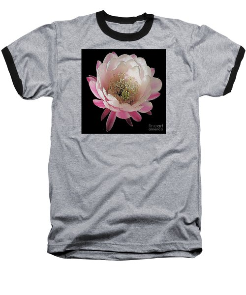 Perfect Pink And White Cactus Flower Baseball T-Shirt by Merton Allen