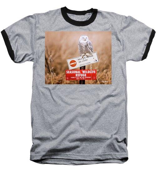 Perfect Spot For A Nap Baseball T-Shirt