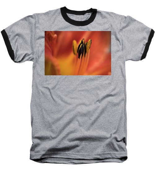 Persimmon Lilly Baseball T-Shirt by Deborah Scannell