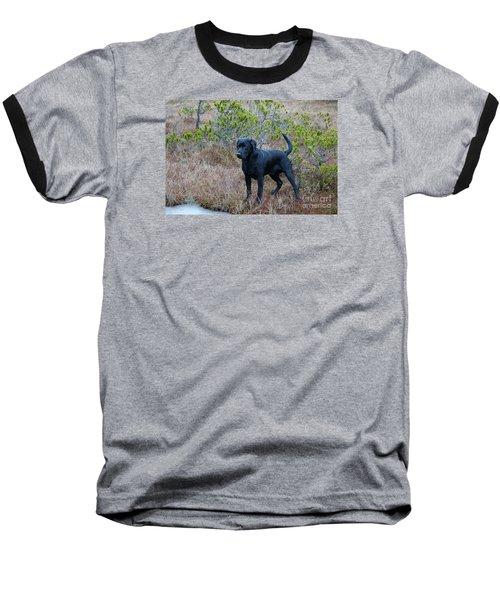 Pet Portrait - Radar Baseball T-Shirt by Laura  Wong-Rose