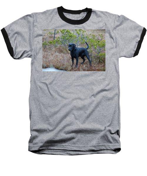 Pet Portrait - Radar Baseball T-Shirt