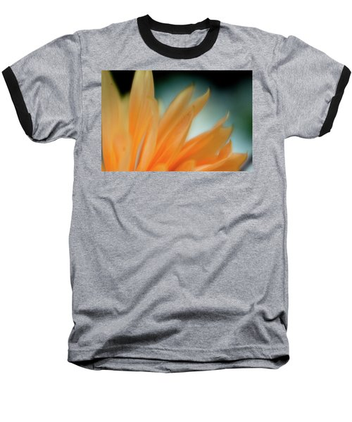 Petal Disaray Baseball T-Shirt by Greg Nyquist
