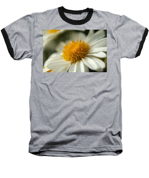 Petals And Pollen Baseball T-Shirt