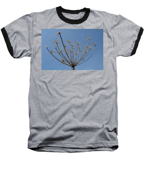 Petite Parasols Baseball T-Shirt