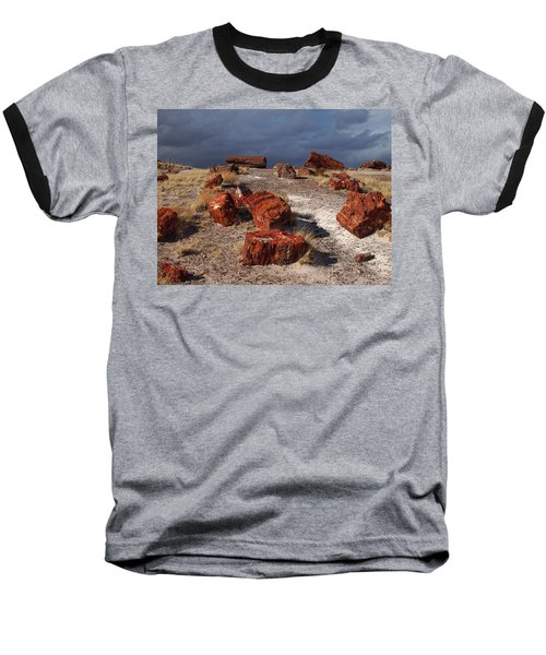 Baseball T-Shirt featuring the photograph Petrified Forest National Park by James Peterson