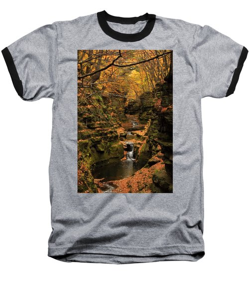 Pewit's Nest - Wisconsin Baseball T-Shirt