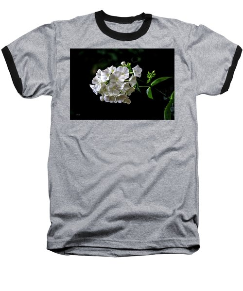Phlox Flowers Baseball T-Shirt