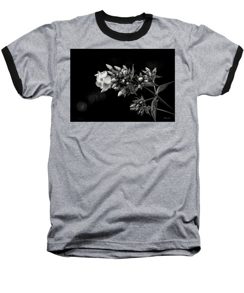 Phlox In Black And White Baseball T-Shirt