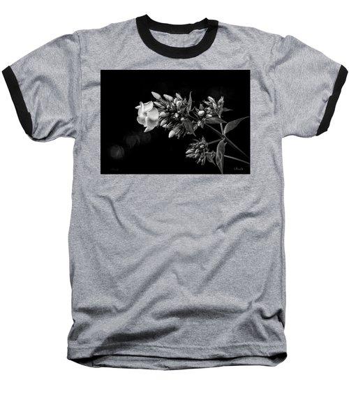 Phlox In Black And White Baseball T-Shirt