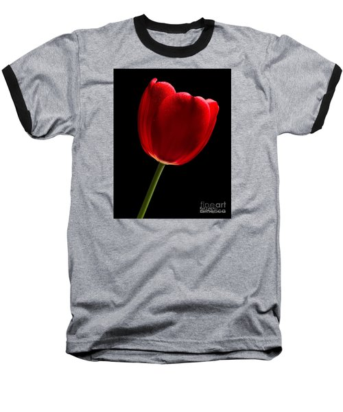 Baseball T-Shirt featuring the photograph Photograph Of A Red Tulip On Black I by David Perry Lawrence