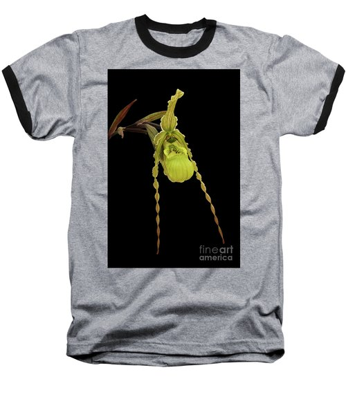 Phragmipedium Richteri Orchid Baseball T-Shirt