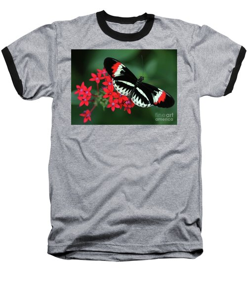 Piano Key Butterfly Baseball T-Shirt