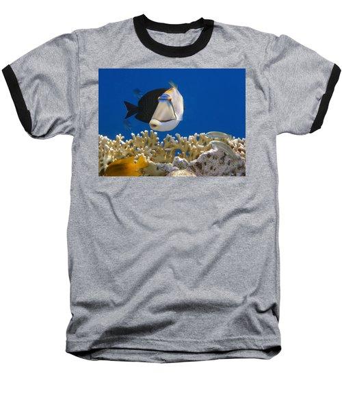 Picasso Fish And Klunzingerwrasse Baseball T-Shirt