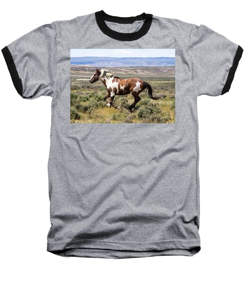 Picasso - Free As The Wind Baseball T-Shirt by Nadja Rider