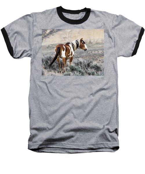 Picasso - Wild Mustang Stallion Of Sand Wash Basin Baseball T-Shirt by Nadja Rider