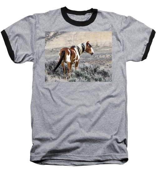 Picasso - Wild Mustang Stallion Of Sand Wash Basin Baseball T-Shirt