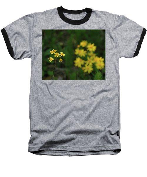 Baseball T-Shirt featuring the photograph Pick Me Daisies by LeeAnn McLaneGoetz McLaneGoetzStudioLLCcom