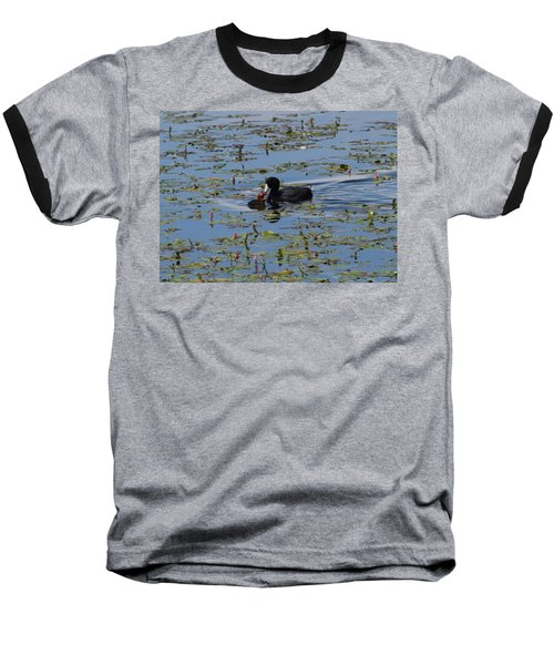 Pied Billed Grebe Lake John Swa Co Baseball T-Shirt
