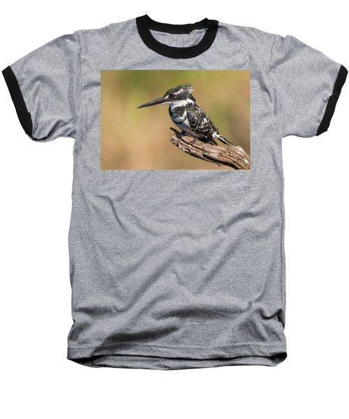 Pied Kingfisher Baseball T-Shirt