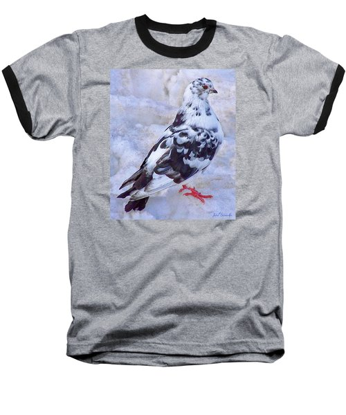 Pigeon On Ice  1 Baseball T-Shirt by John Selmer Sr