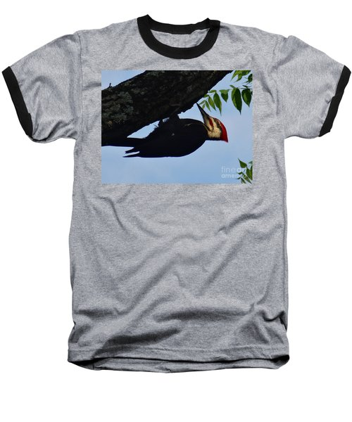 Pileated  Woodpecker Baseball T-Shirt