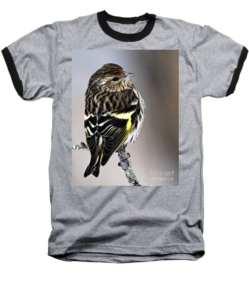 Pine Siskin Baseball T-Shirt