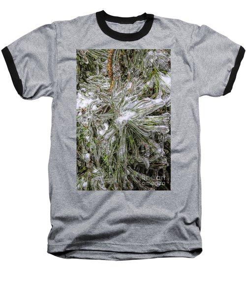 Pinecicles Baseball T-Shirt by Barbara Bowen