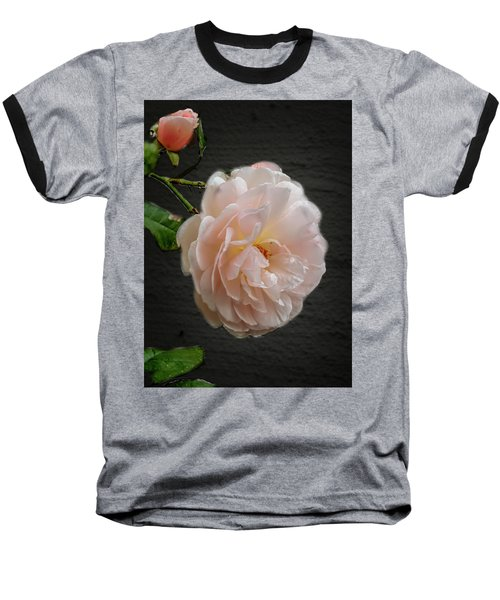 Pink A8 Baseball T-Shirt by Leif Sohlman