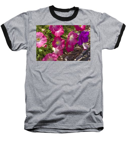 Pink And Purple Petunias Baseball T-Shirt