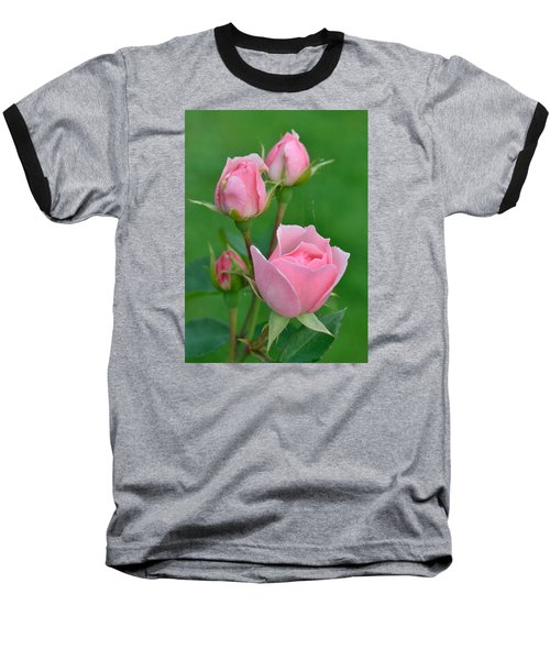Pink And The Buds Baseball T-Shirt by Janet Rockburn