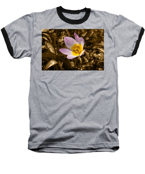 Pink And Yellow Tulip On Sepia Background Baseball T-Shirt