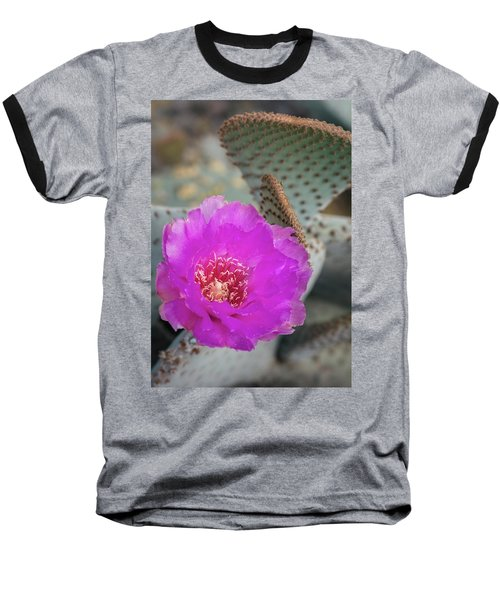 Baseball T-Shirt featuring the photograph Pink Beavertail Cactus  by Saija Lehtonen