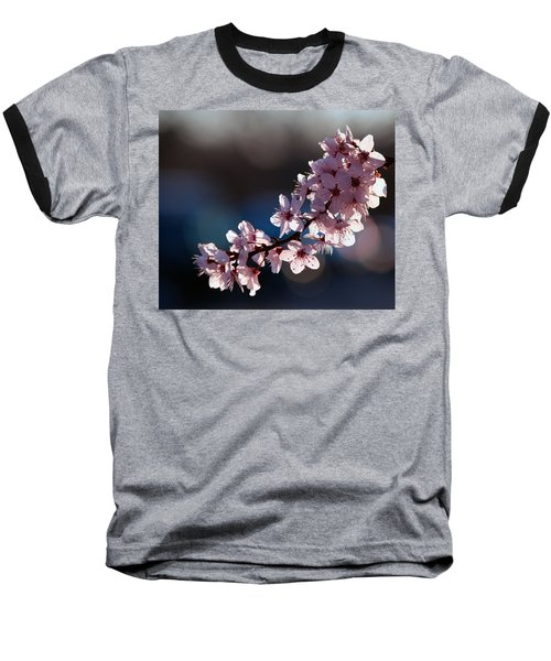 Pink Blossoms Baseball T-Shirt by Don Gradner