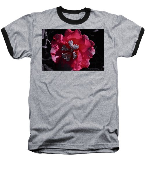 Pink Camillia And Selected Color Baseball T-Shirt by Warren Thompson