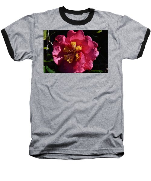 Pink Camillia With Raindrops Baseball T-Shirt