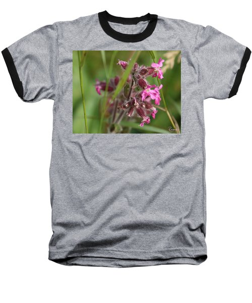 Pink Campion In August Baseball T-Shirt