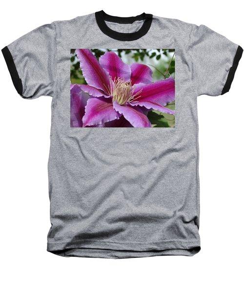Pink Clematis Vine Baseball T-Shirt