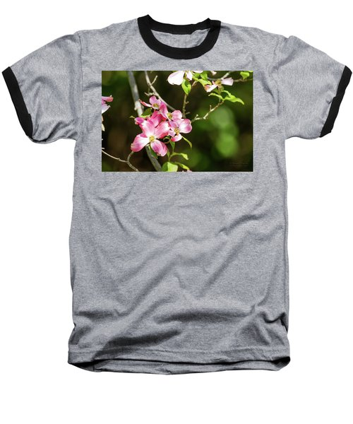 Pink Dogwood Baseball T-Shirt