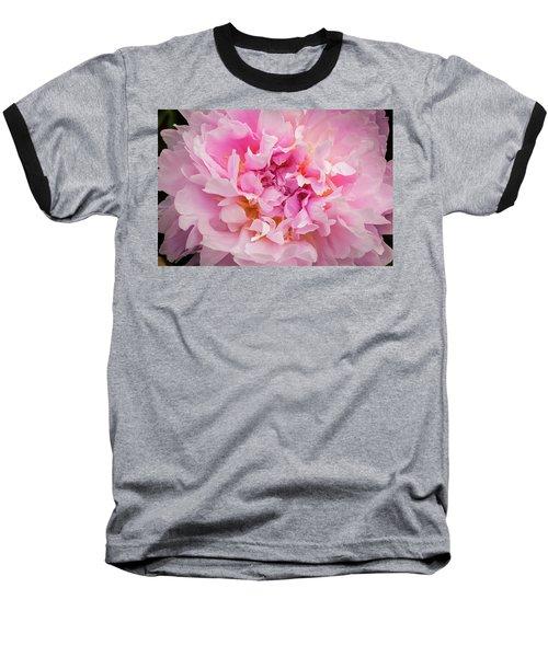 Pink Double Peony Baseball T-Shirt