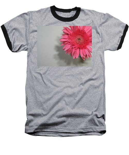 Pink Gerbera Baseball T-Shirt by Marna Edwards Flavell