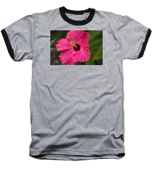 Pink Hibiscus Baseball T-Shirt