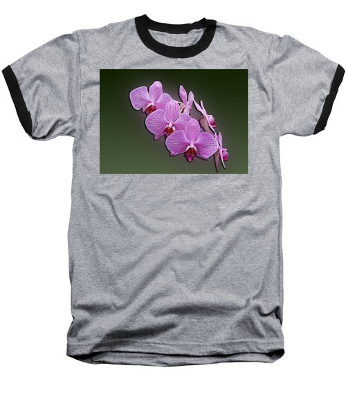 Pink Orchids Baseball T-Shirt by John Haldane
