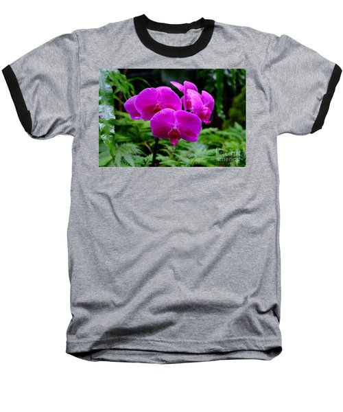 Pink Orchids Baseball T-Shirt by Mini Arora