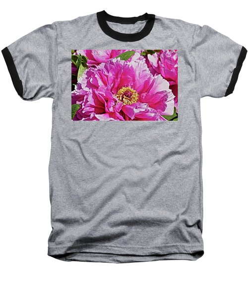 Pink Peony Baseball T-Shirt by Joan Reese