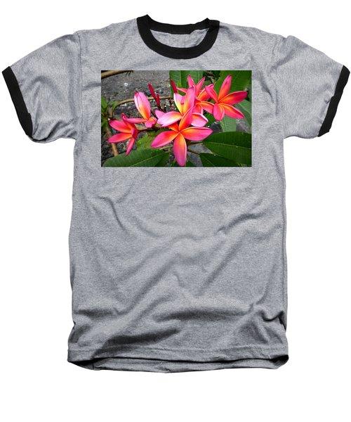 Pink Plumerias Baseball T-Shirt by Lori Seaman