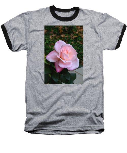 Pink Rose Baseball T-Shirt by Carla Parris