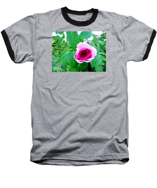 Baseball T-Shirt featuring the photograph Pink Rose by Sadie Reneau