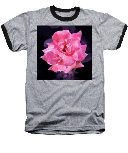 Pink Rose With Violet Baseball T-Shirt