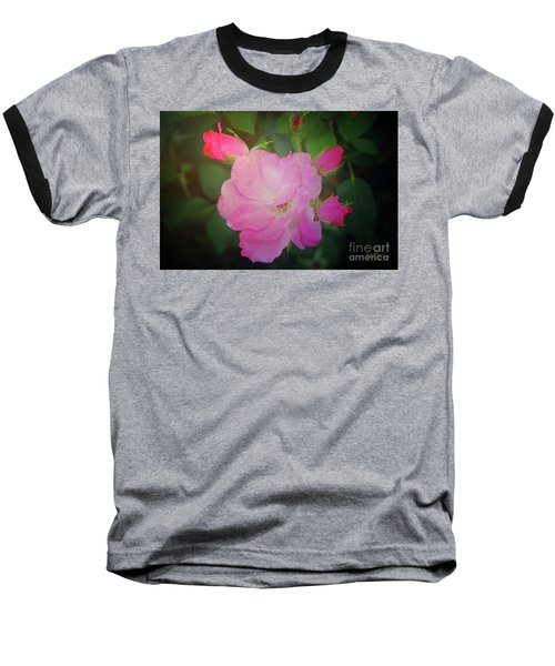 Pink Roses  Baseball T-Shirt by Inspirational Photo Creations Audrey Woods